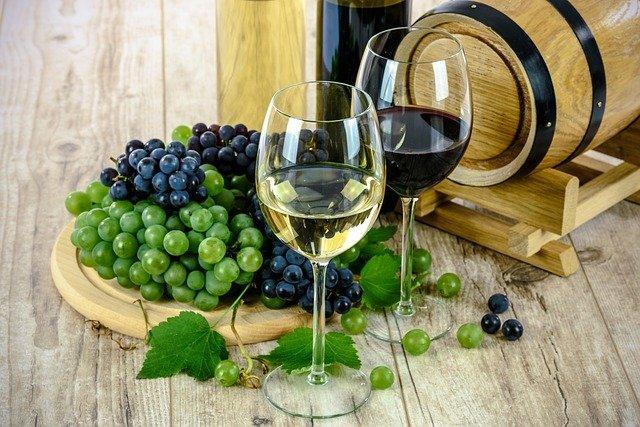 Inspirerende wijnen! Go bio!